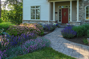 Home entry walk leading to front porch through colorful plantings