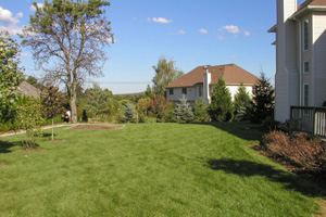Open backyard lawn before landscaping