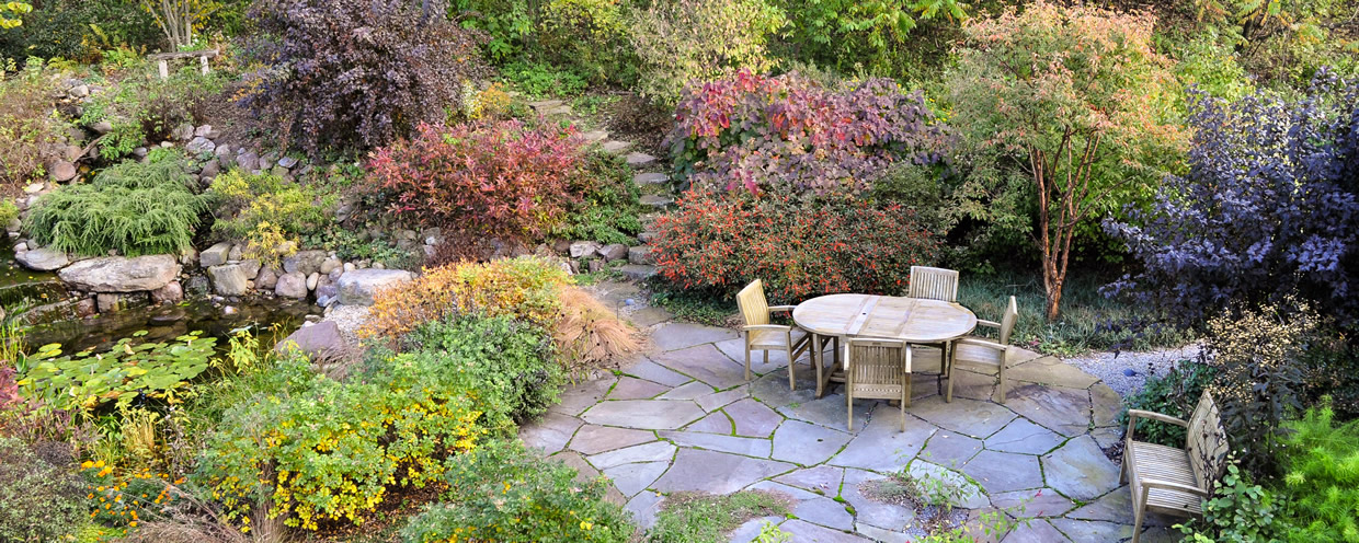 Natural design outdoor living space backyard patio in fall color
